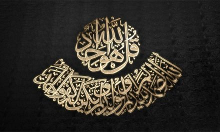 {Audio} In Seeking Healing & Personal Development – Align Your Soul to the Will of Allah